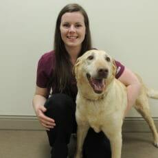 Veterinary employee kneeling next to golden dog