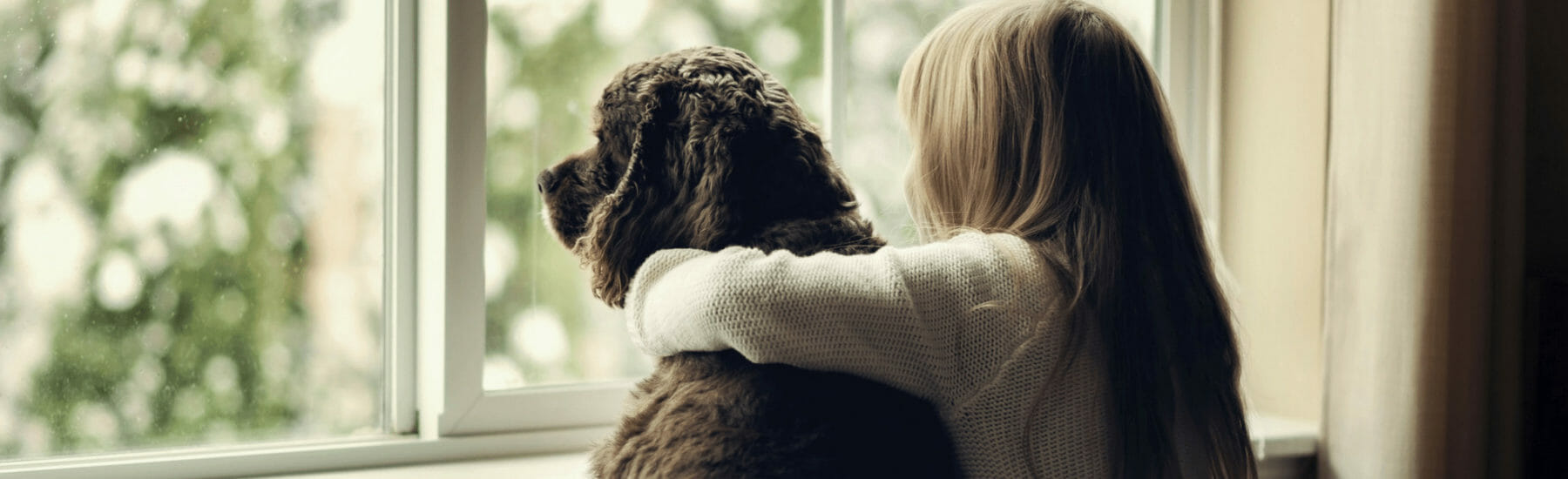 Owner and black dog looking out into window
